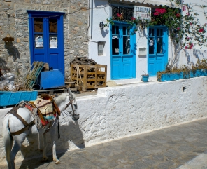 Donkey, Greece